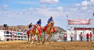 Virginia City Camel Races © Nevada Commission on Tourism