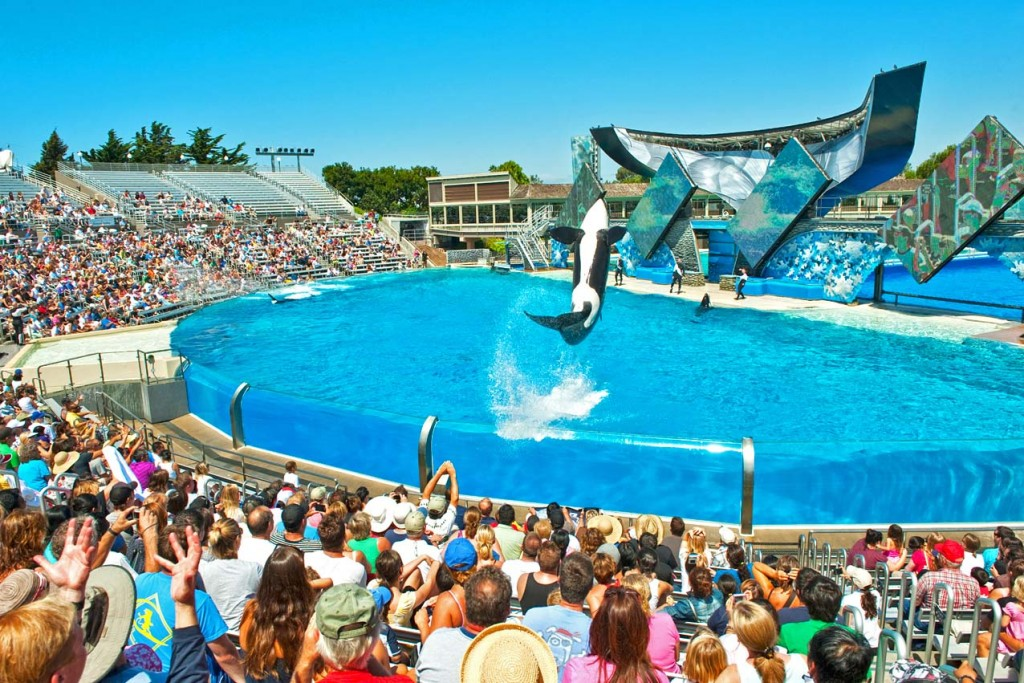 San Diego, SeaWorld (c) CALIFORNIA TOURISM