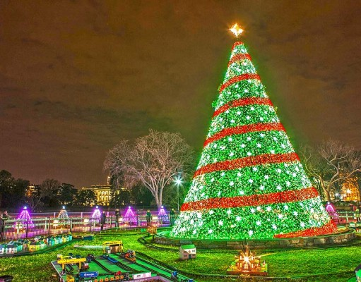 National Xmas Tree Washington DC (cc) Anthony Quintano;