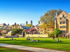 Yale Universität © art of travel