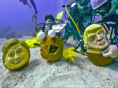 Hillary Clinton und Donald Trump (c) Bob Care/Florida Keys News Bureau/HO