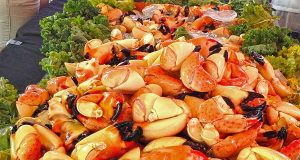 Stone Crab (c) Naples, Marco Islands, Everglades CVB