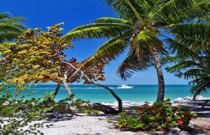 Fort Zachary Beach (c) Rob-ONeal