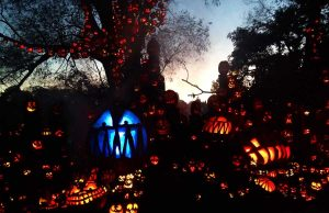 Jack-O-Lantern Spectacular (c) Roger Williams Park Zoo